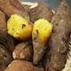 이에프시 맛다름 꿀밤고구마 특상 4.8kg내외 (1개)_이미지