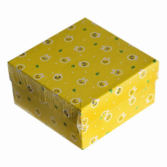 아이콘스 카카오프렌즈 얼굴 패턴 박스 (무지)