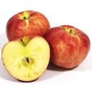 경북 가정용 햇 빨간사과 한입 50~55개(과) 10kg