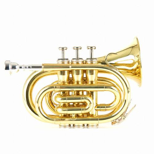 브래들리 미니 트럼펫