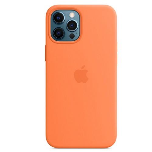 APPLE 아이폰12 프로 맥스 맥세이프 실리콘 케이스 (정품)
