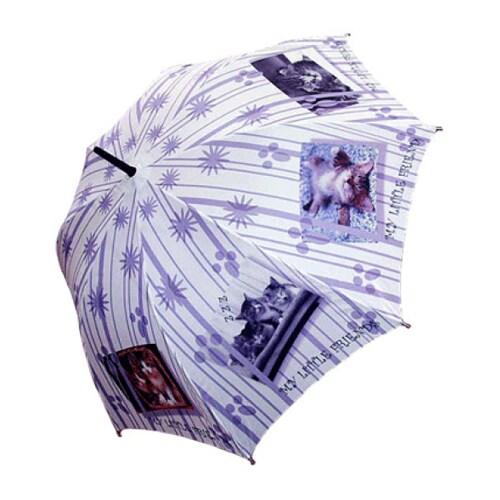 레인보우 헬로우레인캣츠 스트라이프 cats 자동 우산_이미지