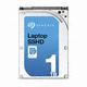 Seagate 1TB Laptop SSH
