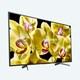SONY 브라비아 XBR-43X800G 해외구매 (세금/배송료 포함)_이미지