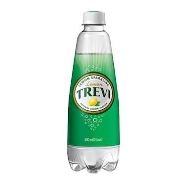 롯데칠성음료 트레비 레몬 500ml(20개)