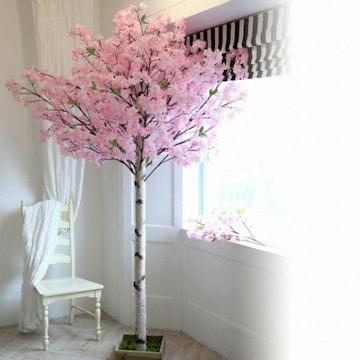 조아트 구름벚꽃나무 240 (사방형)