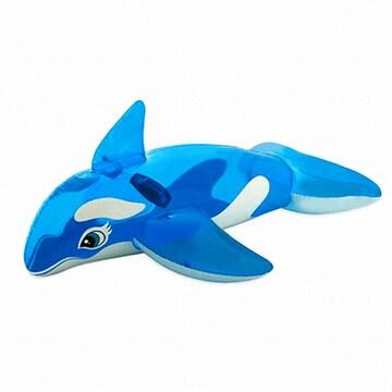인텍스 투명 돌고래 물놀이 튜브
