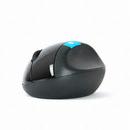 Microsoft Sculpt 인체공학 마우스