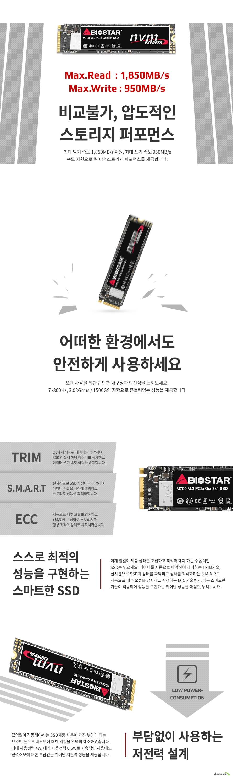 BIOSTAR M700 M.2 NVMe (256GB)