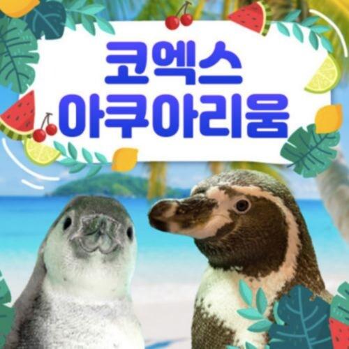 코엑스아쿠아리움  1인 이용권 (소인, 종일권)_이미지