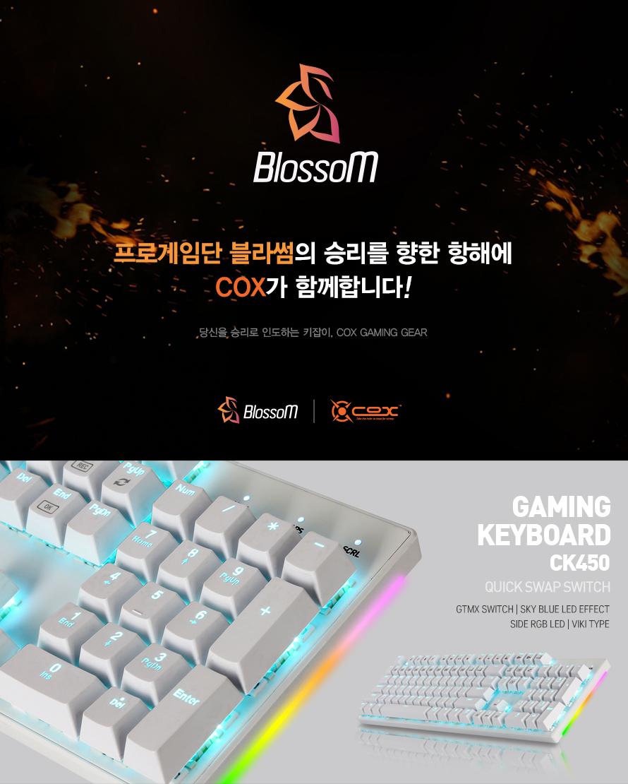 COX  CK450 교체축 사이드 RGB 기계식 게이밍(블랙, 청축)