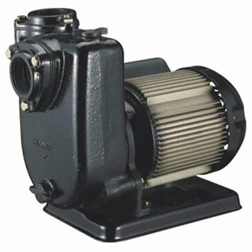 한일전기  농공업용 펌프 PA-930_이미지