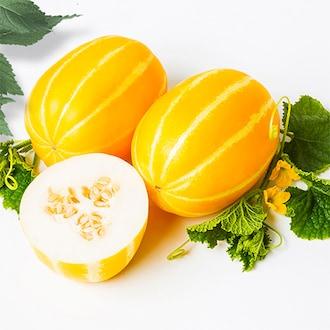 성은푸드 고당도 성주 꿀참외 혼합과 (못난이) 5kg (1개)_이미지