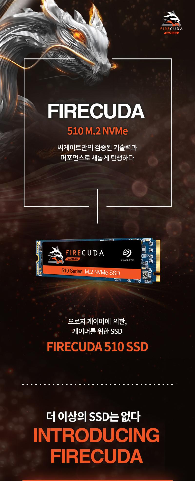 Seagate  파이어쿠다 510 M.2 SSD(2TB)