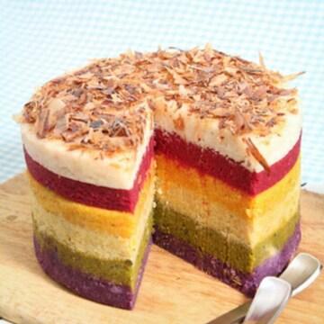 힐링펫 레인보우 케이크