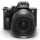 SONY 알파 A7R III A (24-70mm F2.8 GM)_이미지