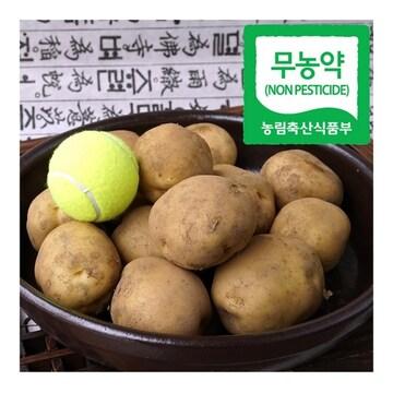성호농산 2017년 무농약 감자 5kg (1개)
