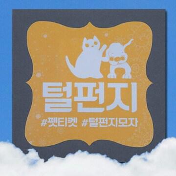 굿이너프 펫티켓 반려동물 털청소 털펀지