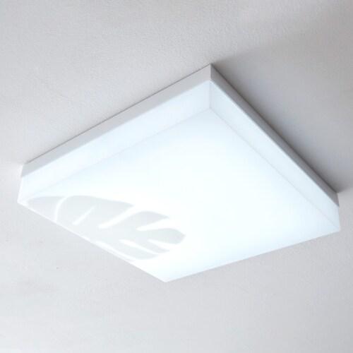 비츠조명 LED 디럭스 네이처 방등 50W_이미지