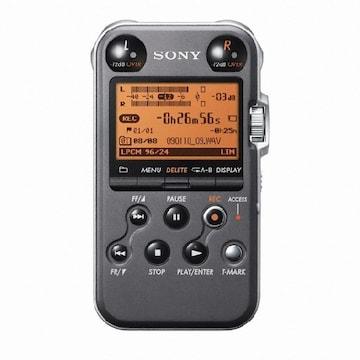 SONY PCM-M10 (4GB 해외구매)_이미지