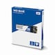 Western Digital WD Blue M.2 2280 (500GB)_이미지