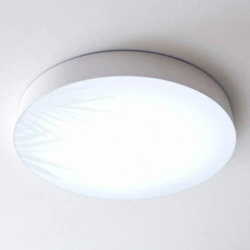 비츠조명 LED 디럭스 네이처 C타입 방등 50W_이미지