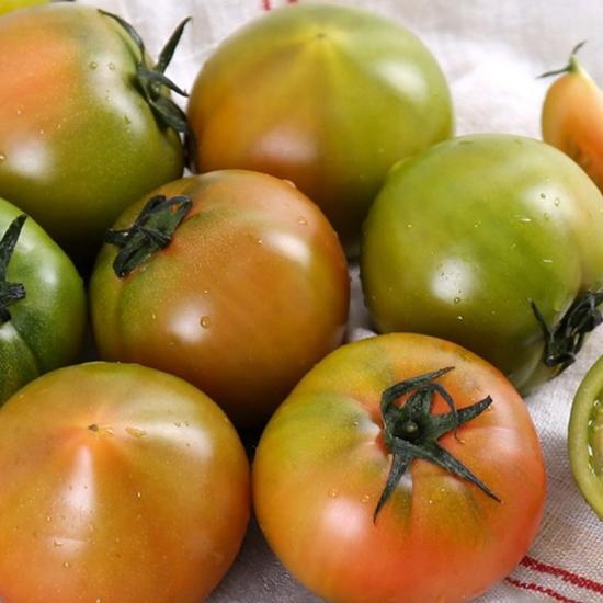 부산 대저 토마토 가정용 랜덤 2.5kg(1개)