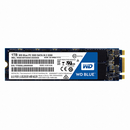 WD Blue M.2 2280 (250GB)