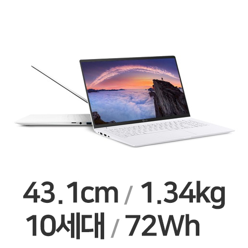 LG전자 2020 그램17 17ZD995-VX50K WIN10 (SSD 256GB)