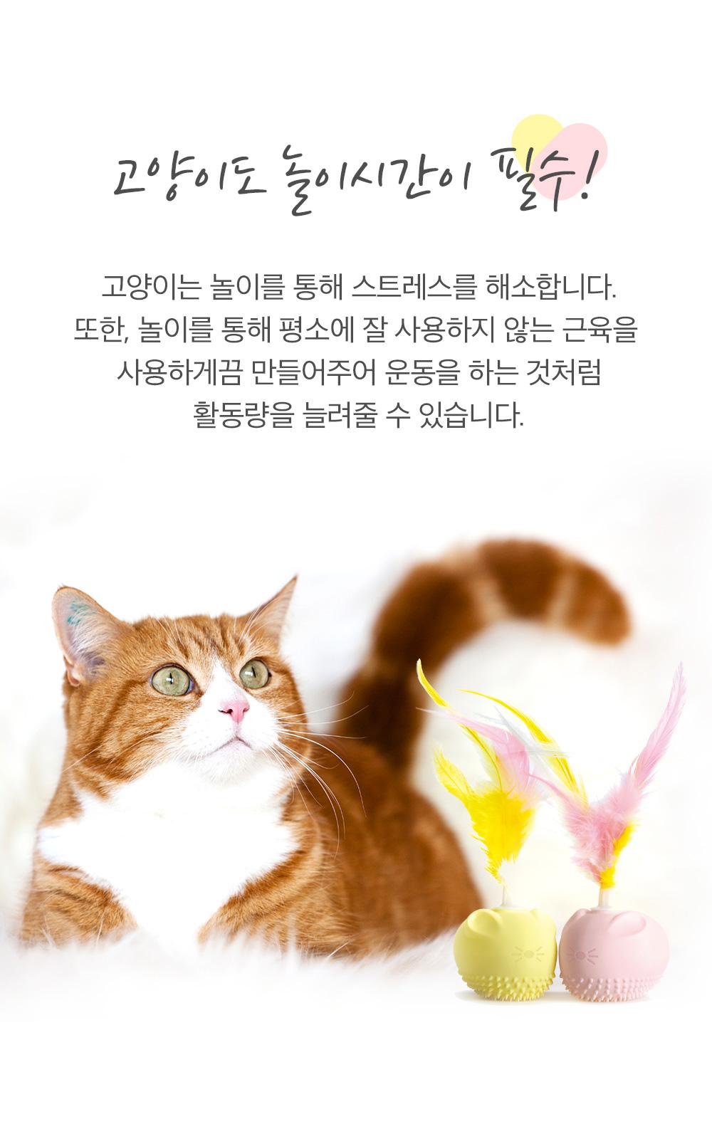 앱코 라이프 오엘라 고양이 전동 장난감