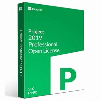 Microsoft Project Professional 2019 (라이선스 ESD)