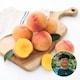 자연맛남 청도 황철민님의 황도복숭아 중과 20개(과)내외 4.5kg (1개)_이미지