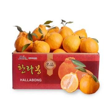 감동 제주 서귀포 한라봉 7~9개(과) 1.6kg (1개)
