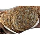 왕쥐포 18~26개(마리) 1kg