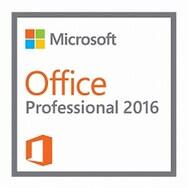Microsoft Office 2016 Professional (ESD 다운로드용)