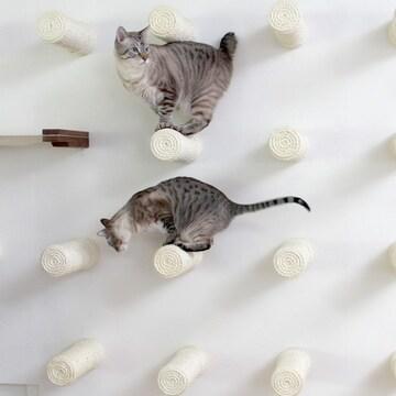 엘비스 DIY 고양이 공간활용 원목벽걸이 캣타워 벽 놀이터(5개)