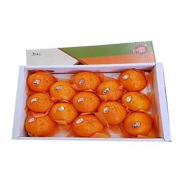 제주농장  레드향 8~15개(과) 3kg (1개)