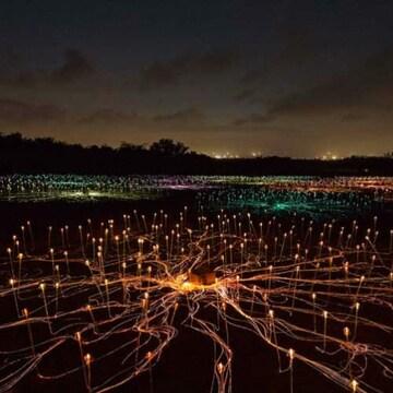 라이트아트페스타 별빛축제 야간 이용권 (제주)(소인)
