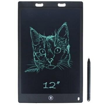 프로칸  LCD 에코 부기보드 ES 12형