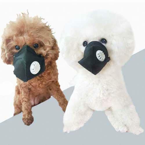 3D 강아지 미세먼지 마스크(여과식) 2개입_이미지