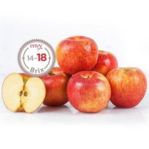 ENVY 달콤하고 아삭한 고당도 정품인증 엔비사과 33~45개(과) 10kg (1개)_이미지
