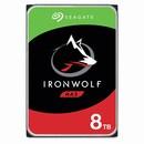 IronWolf 7200/256M