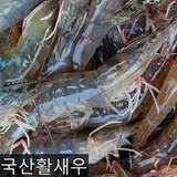 대천수산싱싱해 양식 활 새우 35~45개(마리) 1kg  (1개)