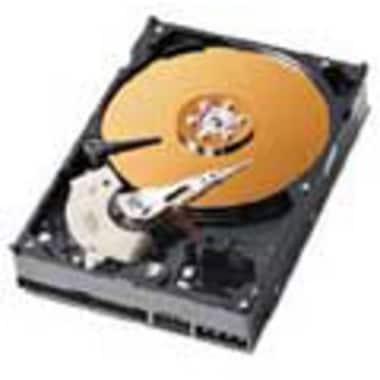 Western Digital WD WD 120GB  7200rpm  WD1200BB 볼_이미지