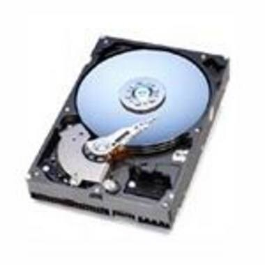 Western Digital WD WD 160GB  7200rpm 8MB WD1600JB 볼_이미지