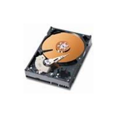 Western Digital WD WD 250GB  7200rpm  WD2500BB 볼_이미지