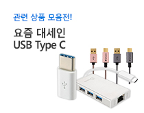 USB타입C