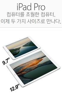 아이패드 프로