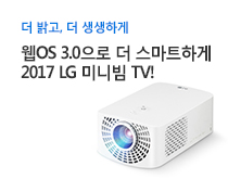 LG 미니빔TV