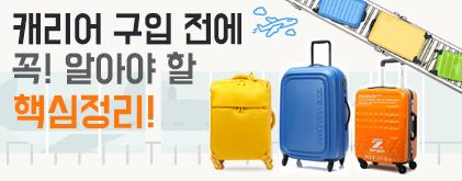 여행가방 인포